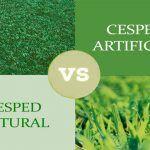 Césped natural o artificial. ¿Cuál es mejor?